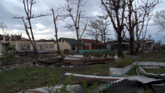 Debris and damage from strong winds of typhoon Megi in the Philippines